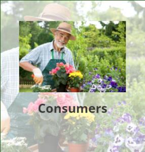 consumer_img